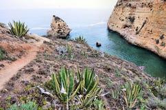 Penhascos do Algarve imagem de stock royalty free