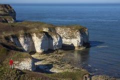 Penhascos do mar - cabeça de Flamborough - Yorkshire - Inglaterra Fotografia de Stock