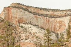 Penhascos do Sandstone do parque nacional de Zion, Utá Fotografia de Stock