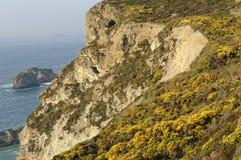 Penhascos do St agnes, Cornualha, Inglaterra Opinião do mar imagem de stock royalty free