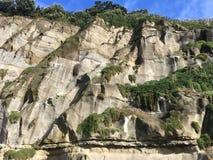 Penhascos em Muriwai Nova Zelândia imagens de stock royalty free
