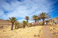 Penhascos em Ponta de Sao Lourenco, Madeira imagens de stock