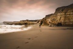 Penhascos na praia no por do sol fotografia de stock