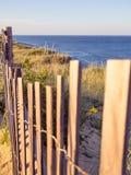 Penhascos nacionais do litoral de Cape Cod em Goldenhour imagem de stock