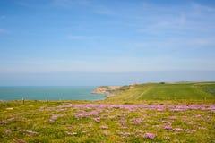 Penhascos no tampão Gris Nez, opale da costa, França Fotos de Stock Royalty Free