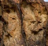 Penhascos rochosos da garganta imagem de stock