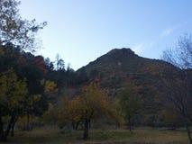 Penhascos vermelhos da rocha de Sedona Fotos de Stock
