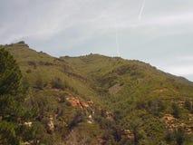 Penhascos vermelhos da rocha de Sedona Imagem de Stock