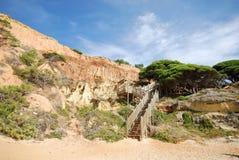 Penhascos vermelhos, pinho e escadaria de madeira Fotografia de Stock Royalty Free