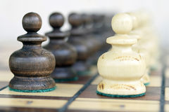 Penhores da xadrez Foto de Stock Royalty Free