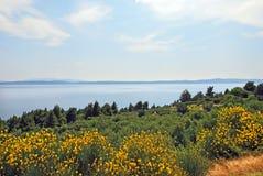 A peninsula in the coast of Croatia Royalty Free Stock Photo