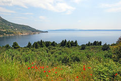 A peninsula in the coast of Croatia Royalty Free Stock Image