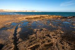 Peninsula Valdes, Argentina. Patagonia Coastline, Peninsula Valdes, Argentina royalty free stock photography