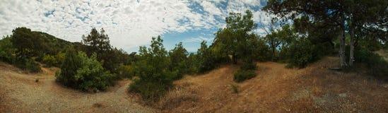 Penisola di Abrau, riserva Utrish Fotografia Stock Libera da Diritti