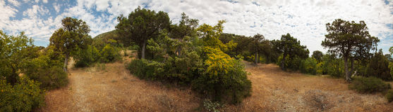 Penisola di Abrau, riserva Utrish Fotografie Stock Libere da Diritti