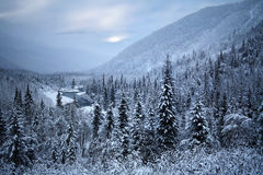 Penisola di Kenai, Alaska Fotografia Stock Libera da Diritti