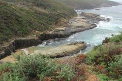 Penisola di Tasman alla baia del canestro Immagine Stock Libera da Diritti