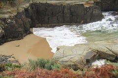 Penisola di Tasman alla baia del canestro Fotografia Stock Libera da Diritti