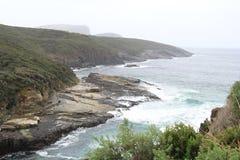 Penisola di Tasman alla baia del canestro Immagini Stock Libere da Diritti
