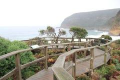 Penisola di Tasman alla baia del canestro Fotografie Stock Libere da Diritti