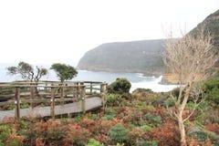 Penisola di Tasman alla baia del canestro Immagini Stock