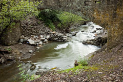 Penitencia Creek at Alumn Rock Park Royalty Free Stock Photography
