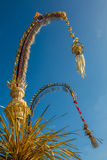 Penjor poles for Galungan celebration, Bali Island, Indonesia Stock Image