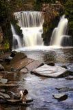 Penllergare-Wasserfall, Wales Lizenzfreies Stockbild