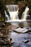 Penllergare Waterfall, Wales Royalty Free Stock Image