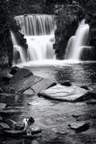 Penllergare Waterfall, Wales Stock Photos