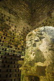 Penmon priorsklosterduvslag, Anglesey, Wales, Förenade kungariket – inte Royaltyfri Foto