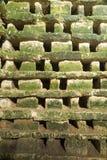 Penmon priorsklosterduvslag, Anglesey, Wales, Förenade kungariket – inte Arkivbild