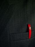 Penna in casella del vestito Fotografie Stock