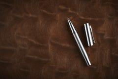 Penna classica Immagine Stock