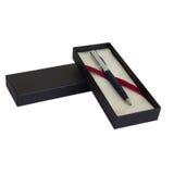 Penna d'argento Immagine Stock
