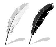 Penna della piuma, in bianco e nero Fotografie Stock