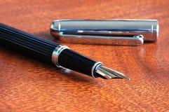Penna di fontana Immagini Stock