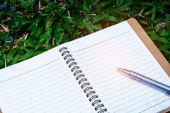 Penna e libro su erba Immagine Stock