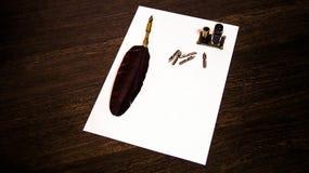A penna ed inchiostro Immagini Stock
