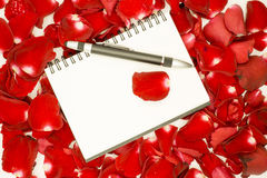 Penna på den öppna anteckningsboken och rosa kronblad Royaltyfri Bild
