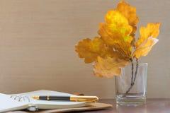 Penna stilografica, diario personale e foglie della quercia fotografie stock