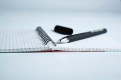 Penna sul taccuino di carta a quadretti Fotografia Stock