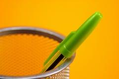 Penna verde Immagine Stock