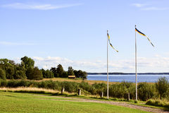 Pennants. Pennants at a Swedish lake in summertime Stock Photography