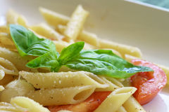 Penne al Pomodoro Fresco Royalty Free Stock Images