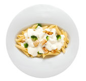 Penne Alfredo Dish Stock Photos