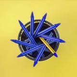 Penne blu ed una penna gialla nel supporto del metallo Fotografia Stock