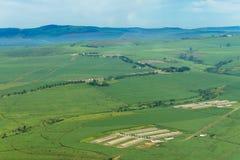 Penne del pollo dei campi dei terreni coltivabili di volo Immagini Stock Libere da Diritti