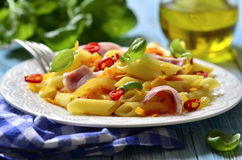 Penne with fried vegetable and smoked bakon. Stock Photography