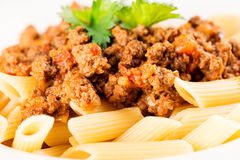 Penne Pasta with Bolognese Sauce macro Royalty Free Stock Photo